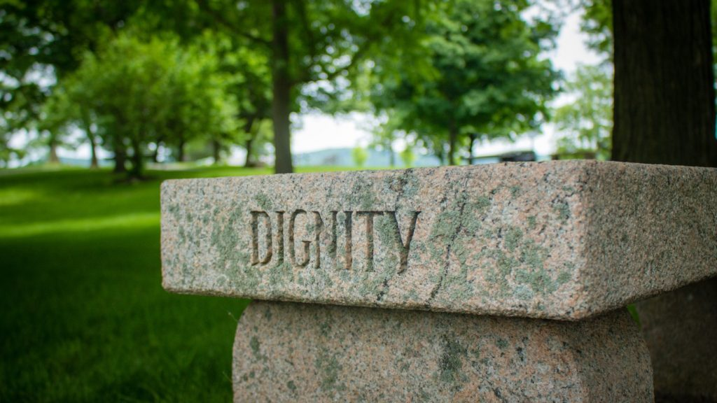 достойнство